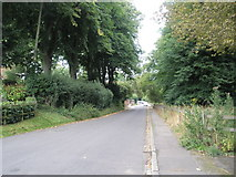 SU7037 : Looking back down Winchester Road to Chawton by Basher Eyre