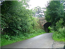 NY6624 : Long Marton rail bridge by David Brown