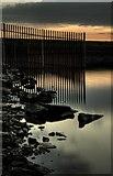 SE2924 : Ardsley Reservoir by Steve Partridge