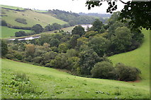 SX8158 : Valley-bottom Woodland in the Dart Valley by Tony Atkin