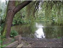 TQ0481 : River Colne: Ford Lane ford by Nigel Cox