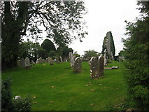 N3025 : Church and graveyard at Kilbride, Co. Offaly by Kieran Campbell
