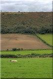 SE6691 : Boon Hill by Mick Garratt