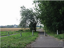 TR3256 : Route of the old road to Deal from Sandwich by Nick Smith