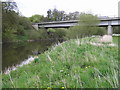 SJ4215 : River Severn, Montford Road bypass bridge by kevin skidmore