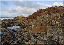 C9444 : Giant's Causeway by Dave Green