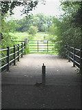 SU5894 : Long Bridge at Hurst Water Meadow by Rod Allday