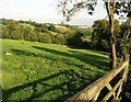 ST7461 : Field near South Stoke by Derek Harper