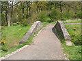 NS6058 : Footbridge in Cathkin Braes Country Park by Lairich Rig
