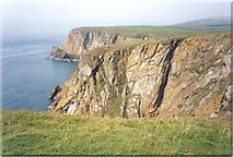 NX1530 : Cliffs on the Mull of Galloway by Sarah Charlesworth