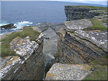 HY2328 : Rock formations in cliffs at Brough of Birsay by Nick Mutton