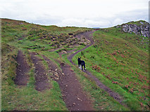 NG2254 : Choose your path by Richard Dorrell
