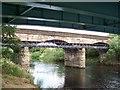 NS6361 : Railway Viaduct near  Carmyle by william craig