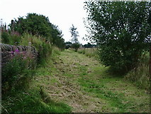 SD7328 : Footpath to Foxhill Banks by Alexander P Kapp