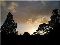 TQ3005 : Sunset over Preston Park by David Chappell