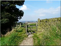 SJ9693 : Gate to Rye Field by Gerald England