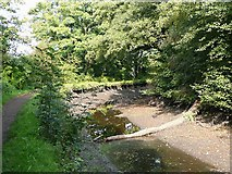SO8785 : Stourbridge Canal empty  south-west of Middle Bridge by Roger  Kidd