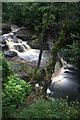 NU0801 : Blackburn Falls by David Lally