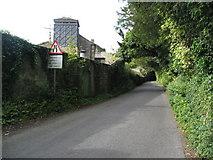 SK2272 : Lane next to Hassop Hall Hotel by Alan Heardman