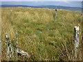 SN8066 : Rain gauge on Bryniau Pica by Nigel Brown