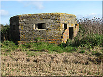 TG3930 : Pillbox on field edge by Evelyn Simak