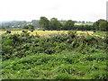 SK3555 : Mooredge Road - View across fields by Alan Heardman