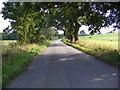 TM3674 : Peasenhall Road by Adrian Cable