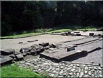 NY0265 : Caerlaverock: the first castle by Lynne Kirton