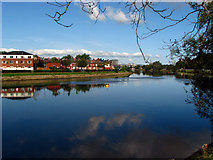 J3472 : The River Lagan at Ormeau Embankment by Rossographer