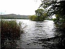 G7233 : Island in Loch Gill by Oliver Dixon