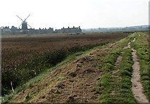 TG0444 : Approaching Cley on the Peddars Way/Norfolk Coast Path by Evelyn Simak