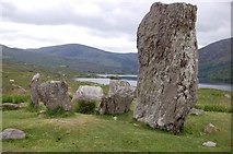 V8363 : Uragh Stone Circle by Trevor Harris