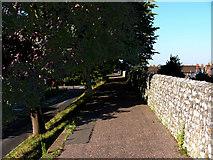 SU8605 : North Walls looking west by Chris Gunns