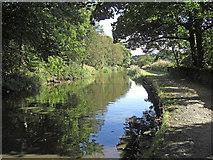 SE0424 : Rochdale Canal near Sowerby Bridge by michael ely