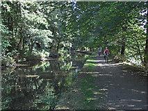 SE0424 : Rochdale Canal near Sowerby Bridge (2) by michael ely