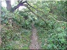 SE0722 : Dye House Lane (6), Norland by Humphrey Bolton