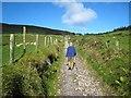 G6334 : Path up Knocknarea by Oliver Dixon