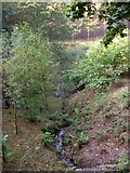 SJ2504 : Brook entering Offa's Pool by Penny Mayes