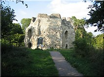SU7251 : Typical view of St John's Castle by Sandy B
