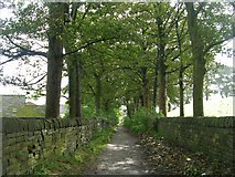 SE0423 : Footpath - St Peter's Avenue, Sowerby by Betty Longbottom