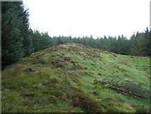 NY5679 : Site of old Cairn by David Liddle