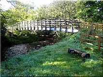 NY6565 : Cycleway bridge over the Tipalt Burn by Oliver Dixon