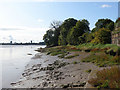 SO6704 : By the River Severn by Stuart Wilding
