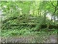 SM9219 : The motte, Camrose by Humphrey Bolton