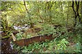 SJ9791 : Abandoned coal barge, Etherow Country park by Phil Champion