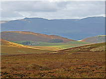 NN7613 : Moorland on the Northwestern Slope of Meall a' Choire Riabhaich by Dr Richard Murray