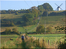 SU7691 : The hill and windmill, Turville by Andrew Smith