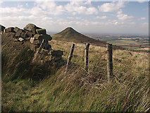 NZ5812 : Fence and wall, Newton Moor by Stephen McCulloch