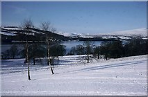 NS3882 : Snow in Balloch Country Park by Sarah Charlesworth